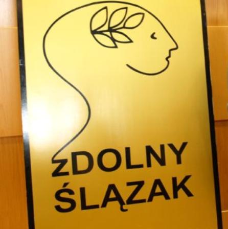 Tytuł Laureata i Finalisty zDolnego Ślązaka